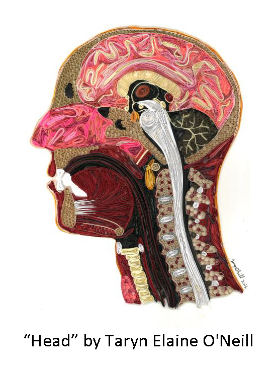 """Head"" by Taryn Elaine O'Neill"